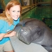 Snooty: The face of Manatee County