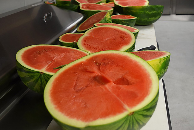 Do you love seedless watermelons in the hot summer? UF scientists are on the case