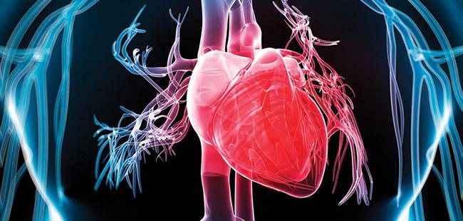 Risk factors for heart disease