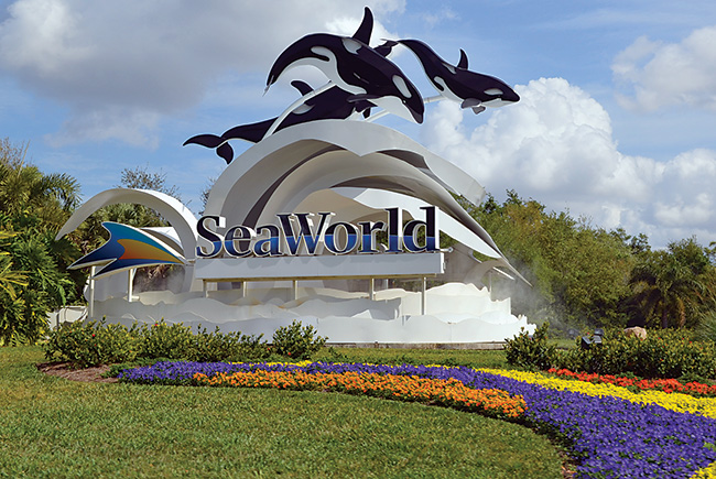Hot water: SeaWorld faces class-action lawsuits and investigations