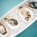 Pearls of wisdom: A new bed of oysters is cropping up in Florida