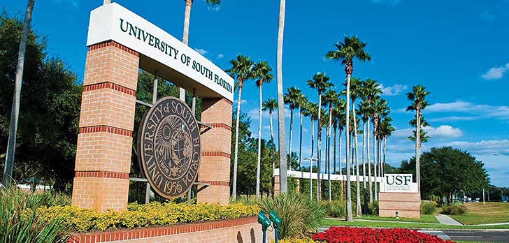 In major shift, House bill would turn three USF universities into one