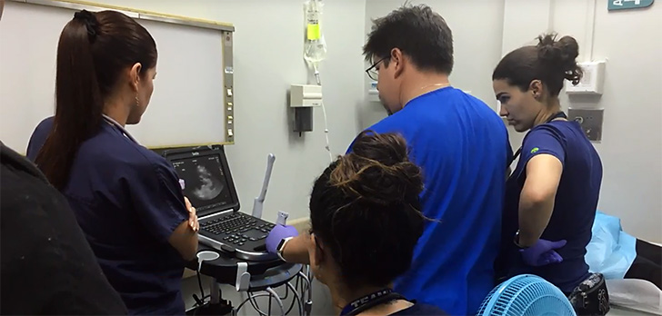 Hospitals are turning to hurricane-hit Puerto Rico to recruit nurses