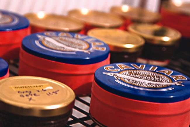 Mote Caviar