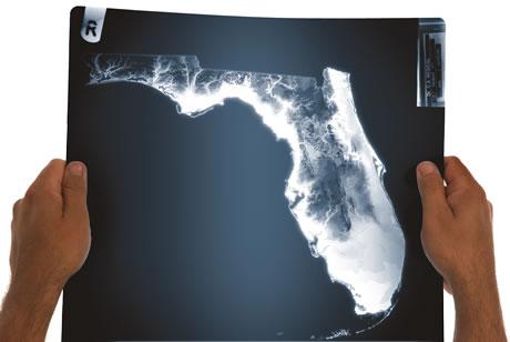 Examining Florida