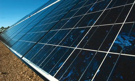 FGCU's solar panel field
