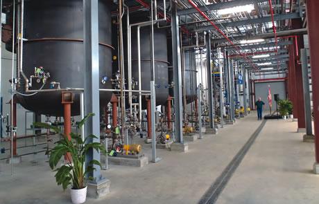 Buckeye Technologies/UF biomass plant