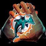 miami-dolphins-glove-1