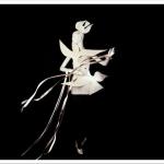 Yves-Saint-Laurent-The-Retrospective-at-the-Denver-Art-Museum-Teaser-6