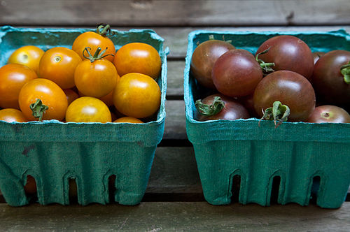 Your Best Cherry Tomatoes