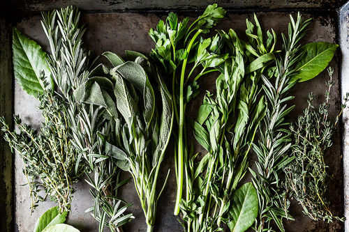 Fresh herbs from Food52