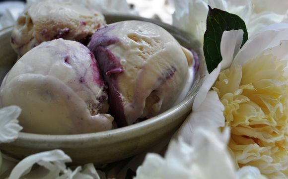 Peony Ice Cream with Blackberry Honey Swirl