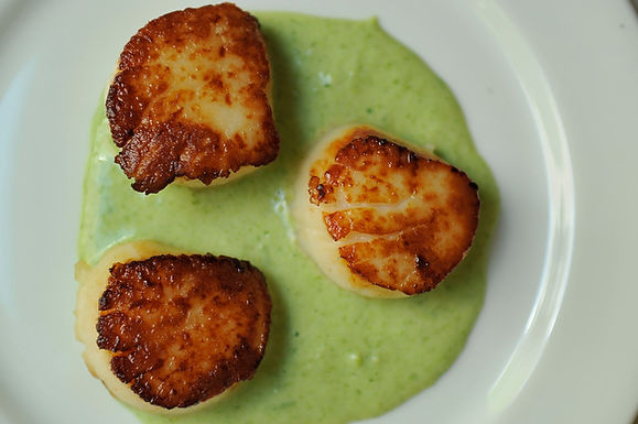 Seared Scallop with Spring Onion and Tarragon Cream