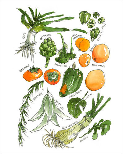 Vegetables by Wendy MacNaughton