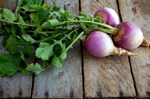 Your Best Ideas for Turnips