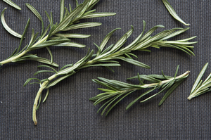 Your Best Ideas for Rosemary