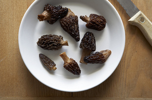 Your Best Ideas for Morels