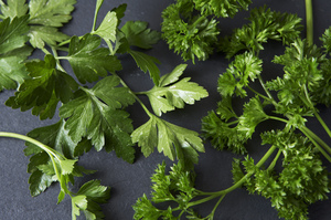 Your Best Ideas for Parsley