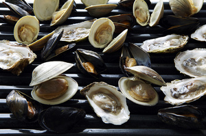 From Scratch: Grilling Bivalves