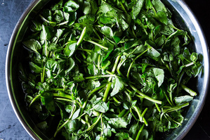 From Scratch: Tender, Leafy Greens