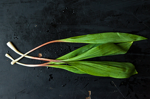 From Scratch: All About Ramps