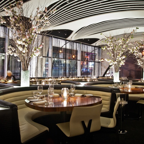 New york stk midtown stk mt 500x500