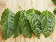 Herb Salad with Thyme-Crusted Tuna Recipe