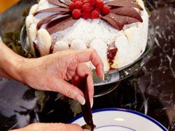 Chocolate-leaf-sl-257713-l