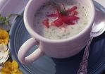 Cool as a Cucumber Soup with Shrimp Recipe