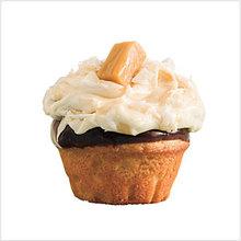 Salted Caramel-Chocolate Cupcakes Recipe