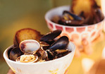 Steamed Mussels and Clams Recipe