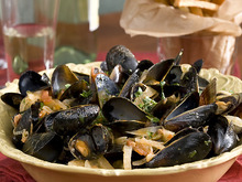 Steamed Mussels in a Tomato and Fennel Broth with Perfect French Fries Recipe