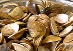 Manila Clams in Garlic and Beer Recipe