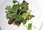 Wilted Greens with Warm Sherry Vingaigrette Recipe