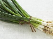 Green Onion Pancakes Recipe