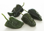 Note on roasting chiles and bell peppers Recipe