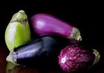 Catalan Roasted Vegetable Salad Recipe