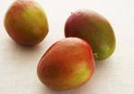 Seared Foie Gras with Mango and Mango Vinaigrette Recipe