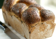 Farmhouse Whole Wheat Bread Recipe