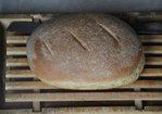 Ricotta Whey and Barley Bread Recipe