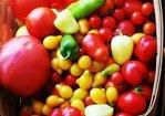 End of Summer Tomato Cruda Recipe