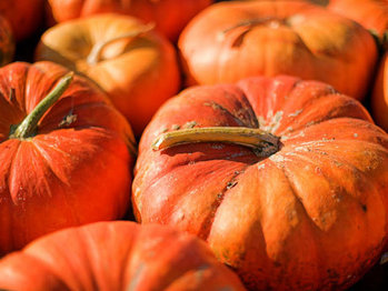 Pumpkin-vitamina-lg