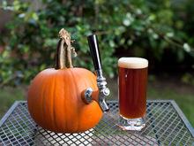Maple Pumpkin Ale (For Beginning Homebrewers) Recipe