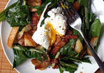 Dinner Tonight: Dandelion Salad with Poached Eggs and Bacon Recipe