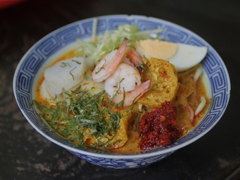 20110802-laksa-primary