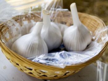 20090112-garlic