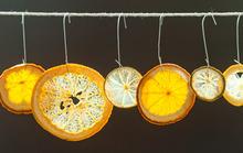 Homemade Citrus Ornaments Recipe