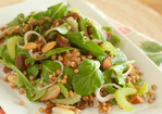 Wheat Berry, Apricot and Arugula Salad Recipe