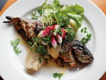 Ned Ludd's Stuffed Ruby Trout, Fennel, Scallions, and Herbs Recipe