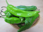 Hatch_chiles0001